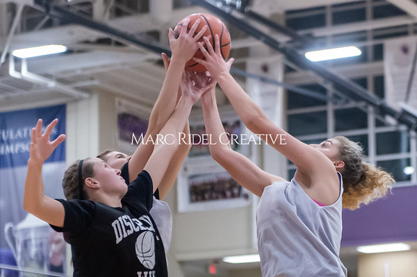 Broughton girls basketball vs Wake Forest. November 14, 2019. D4S_0381
