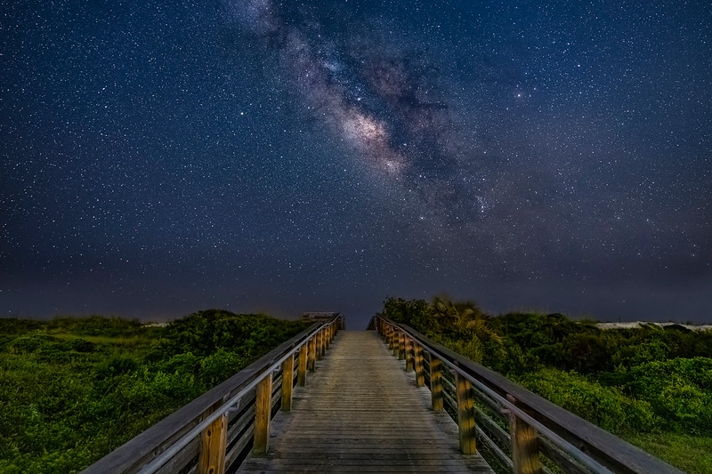 Boardwalk to the Stars -PSA Score14 Honorable Mention