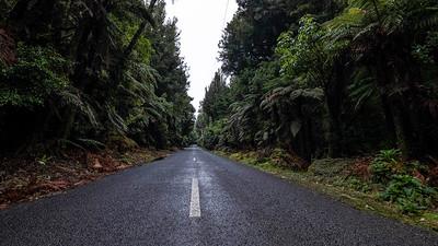 Okataina Road
