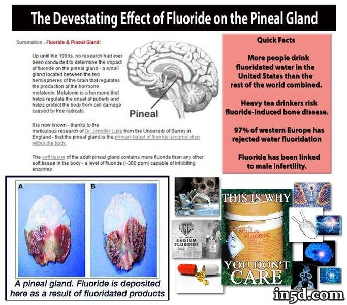 Facts most people don't know about fluoride