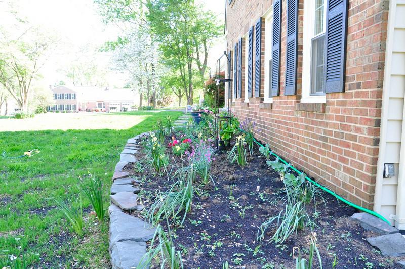 garden-0022.jpg