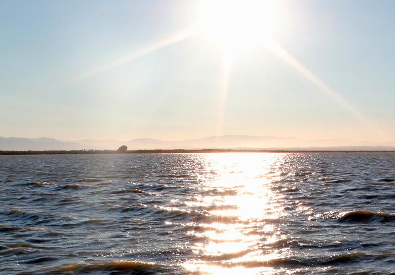 04 The Salton sea (15).JPG