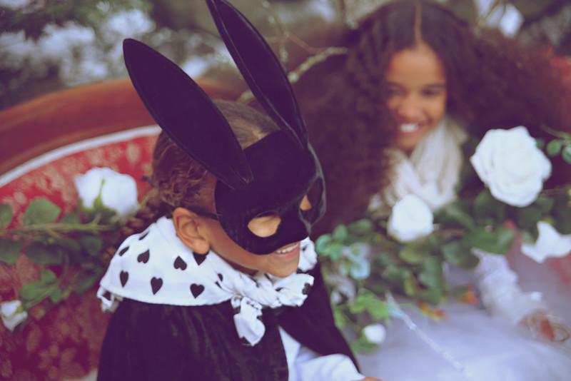 Christmas Wonderland And Mr Magic Rabbit