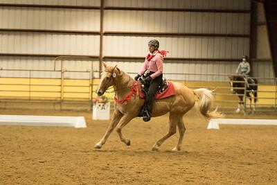 Horse 633