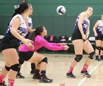 Hammondsport Volleyball 10-27-16