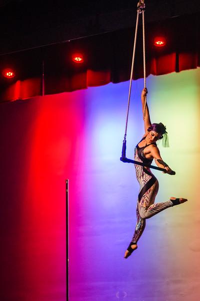 Kairos Circus Benefit-20150109-1696.jpg