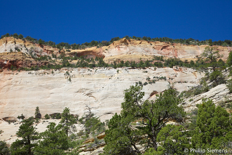 Cliff over Many Pools Canyon