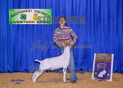2020 Southwest District Livestock Show