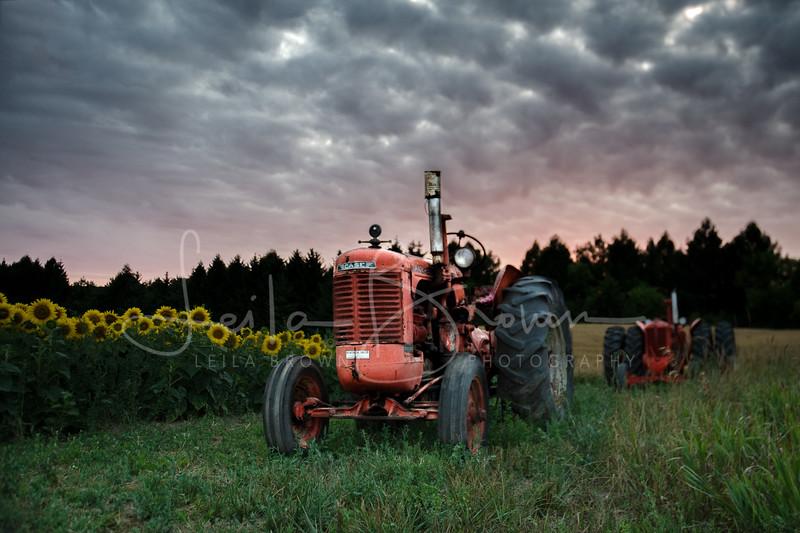 Sunflower tractor.jpg