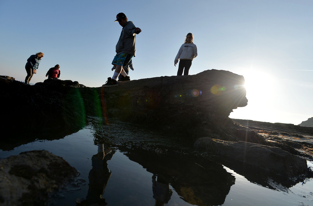 . New Year\'s Day brought one of the lowest tides of year, offering a glimpse of life under the ocean surface for young explorers in San Pedro, Wednesday, January 1, 2014. (Photo by Sean Hiller/ Daily Breeze).