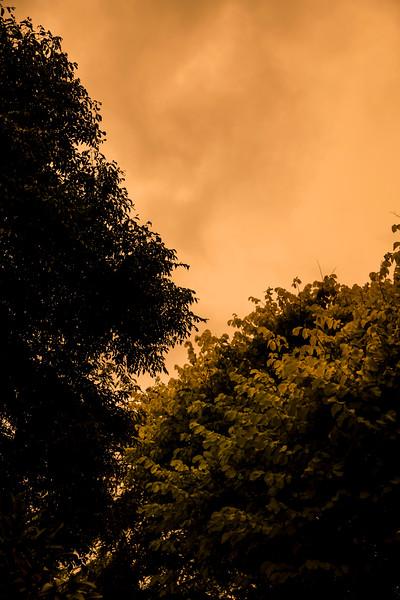 orangesky-003.jpg