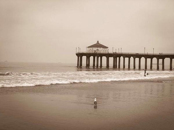 Your daily Manhattan Beach photo