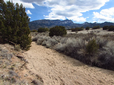 Placitas Trails Hike-West Side  3-2-20