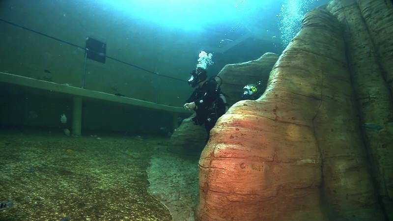 Underwater Walk Edit 45secs.00_00_15_16.Still019.jpg
