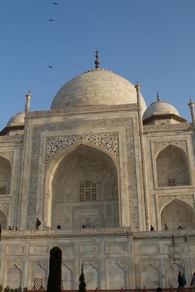 India_2012Feb-5774.jpg