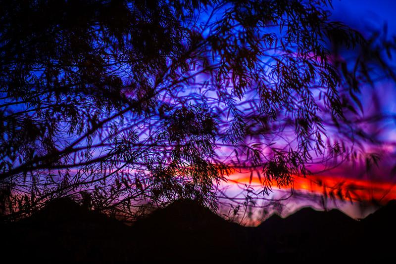 2015-12-10-Sunset Art-3.jpg