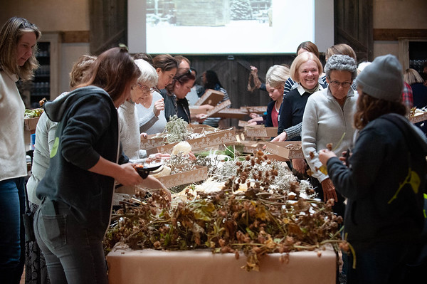Wreath Making Workshop  & Author Talk at Terrain Gardens