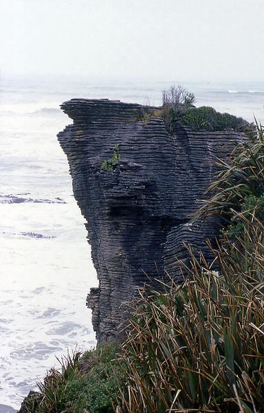 NZ_045.jpg