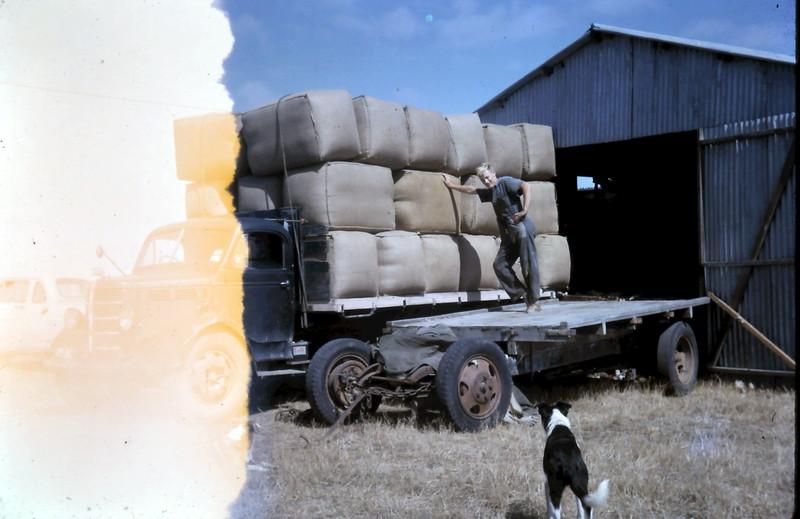 1965-1-25 (1} Wool being loaded @ Akeringa.JPG
