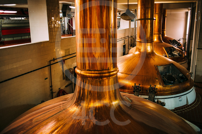 coors_brewery_tour-7461.jpg