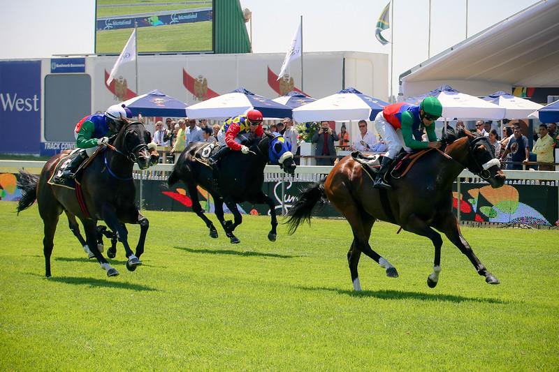 Sun Met_Race 1_ KR Maiden Plate-0553.jpg
