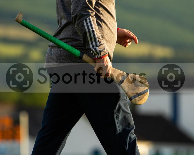 Friday, June 14 2019 North Tipperary Junior (A) Hurling Championship - Roscrea vs Borris-Ileigh