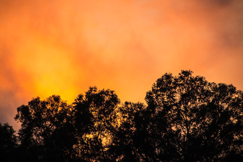 January 22 - Sunset.jpg