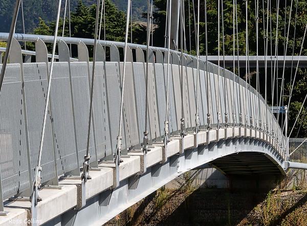 Upokongaro Cycle Bridge 2021