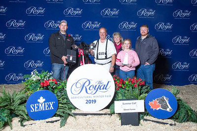 Holstein Winners Circle