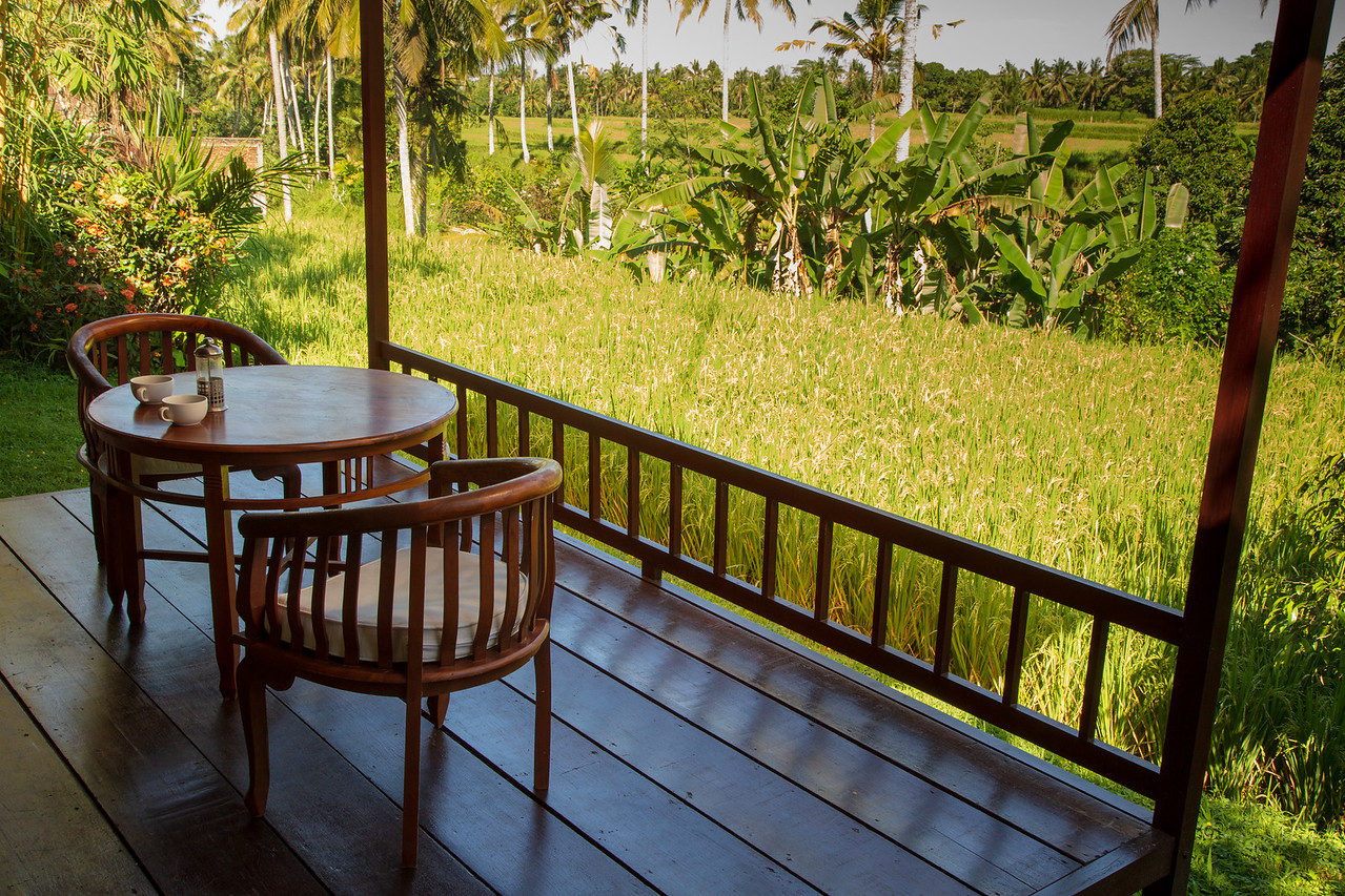 View from Porch of Ubud Bali Villa Rental