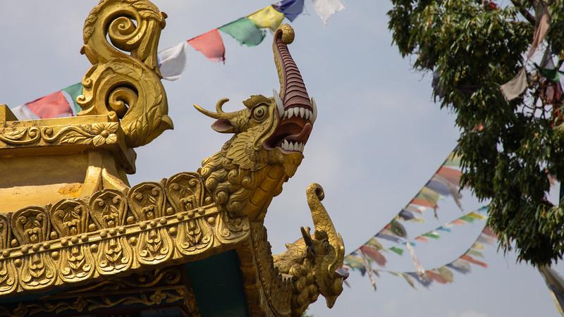 190407-101505-Nepal India-5798.jpg