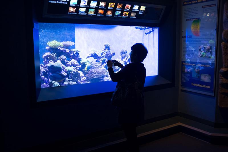 Lunch at the Aquarium