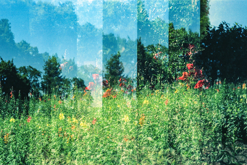 Stratton's Cutting Garden | Pullman, WA