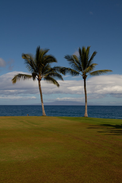 2012_06_01 Kihei Surfside 10.jpg