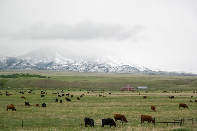 Southern Montana