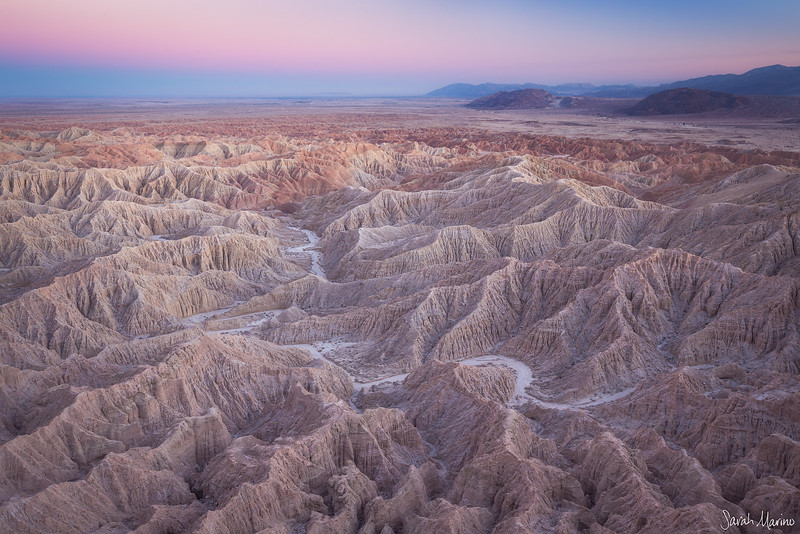 Sarah-Marino-California-Anza-Borrego-Badlands-1200px-Watermark.jpg