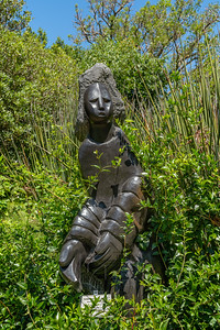 Kirstenbosch National Botanical_2007
