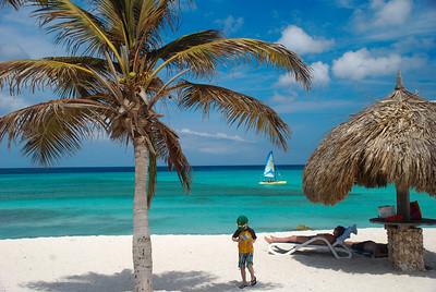 Aruba 2013
