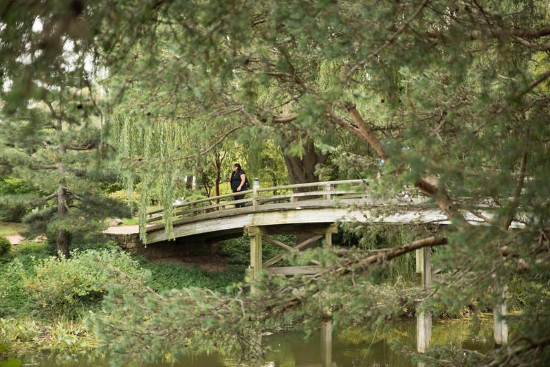 Chicago Botanic Garden 090.jpg