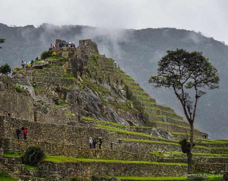 Peru 2017-02661.jpg
