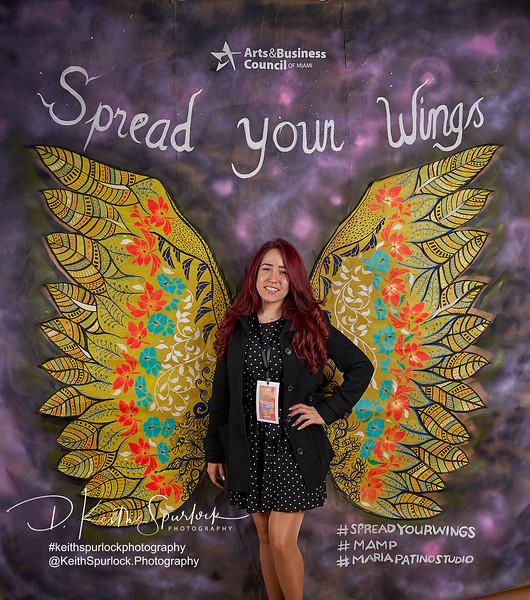 DS904953 MAMP2019-Wings.jpg