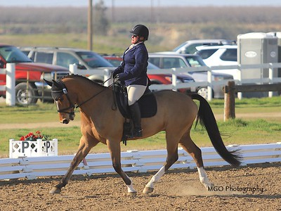 Fresno County Horse Park Horse Trials February 2020