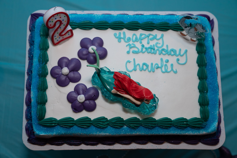 Charlie's Birthday-3674.jpg