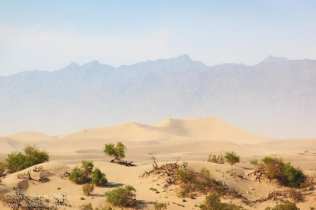 The Sandstorm II