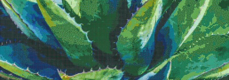 X Agave 4 x 11_mosaic.jpg