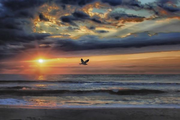Vantage Phoenix Photography