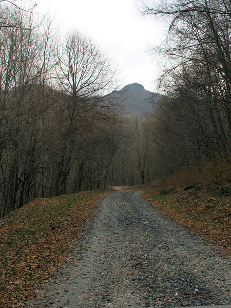 Oak Trail, the residential road you follow up to the game land access road.