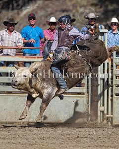 Bull Riding- Clinton 2012