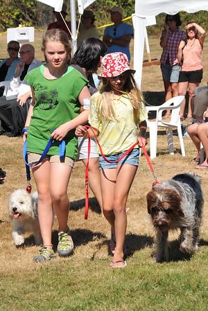 2013-08-04 Mayne Dog Show