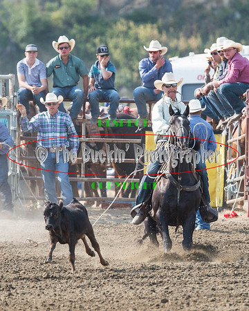 WOS Slack Riding Roping and Wrestling